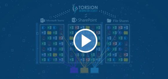 How it works Torsion Information Security